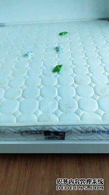 晚安家居是什么档次,晚安床垫真实使用揭秘,你不知的内幕