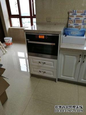 请问DAOGRS蒸烤箱G7怎么样??说说蒸烤箱能代替微波炉吗
