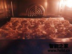 【烘培大师点评】大宇蒸烤箱怎么样?真的好用吗??