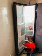 美的 BCD-231WTM(E)电冰箱真的很强大吗?
