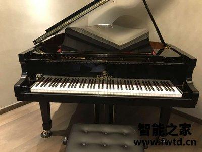 用后半年点评哈农三角钢琴GP152怎么样?评分如何??
