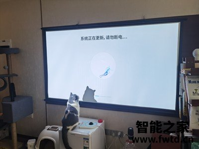 大伙体验:投影仪爱奇艺奇遇LT01评测怎么样真的喜欢吗,真实感受!!